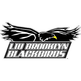 BROOKLYN BLACKBIRDS