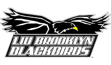 Long Island University Brooklyn